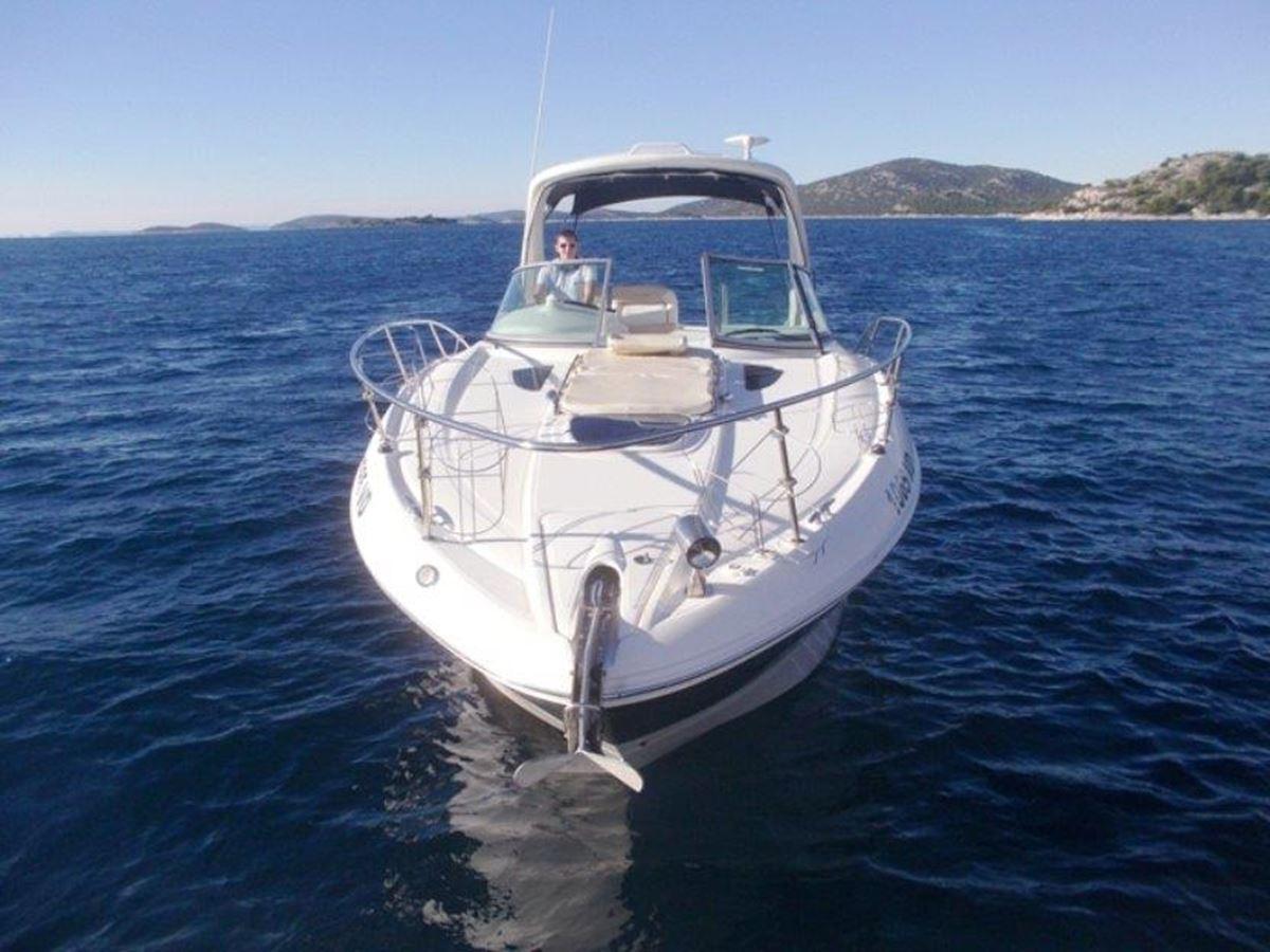 Sea Ray 335 (28)