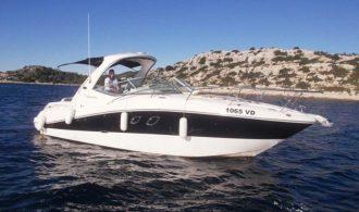 Sea Ray 335 (26)